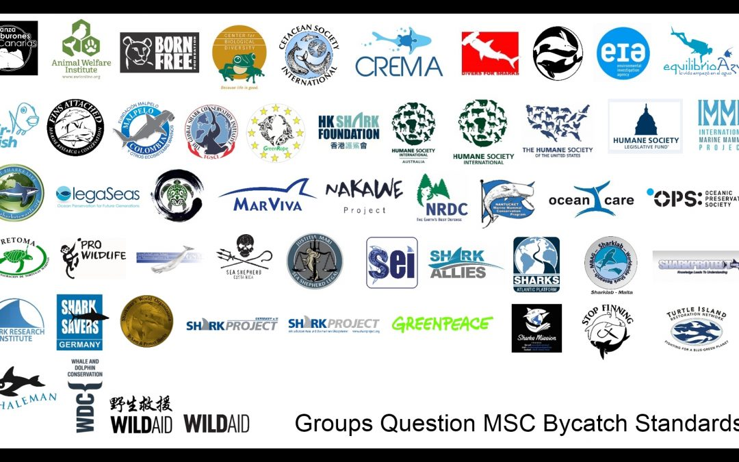 CREMA SIGNS ON TO LETTER TO THE MARINE STEWARDSHIP COUNCIL FOR QUESTIONABLE LISTINGS OF SUSTAINABLY CAUGHT MARINE LIFE.