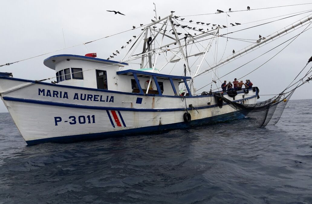 Illegal shrimp trawler caught red-handed in Cabo Blanco Marine Managed Area